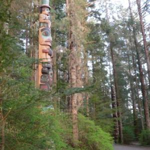 Totem Park Bird Sounds, Sitka, Alaska
